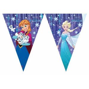 Procos Banner Frozen Snowflakes