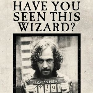 Minalima Pohľadnica Harry Potter 3D - Have You Seen This Wizard?